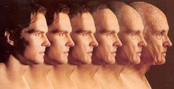 Telomeres-reversing-aging