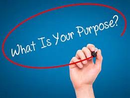 Purpose (2)