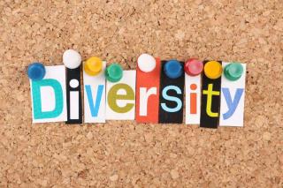Diversity-image