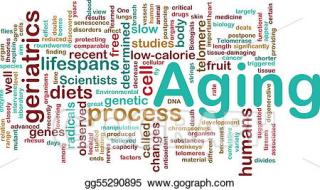 Agingwordcloud